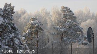 IMG_2942.JPG - 426kB