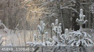IMG_2940.JPG - 458kB