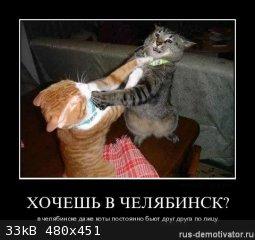 82377712_1307702661_hoshevchelyabinsk.jpg - 33kB