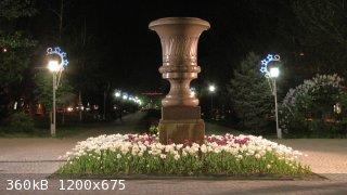 IMG_5571.JPG - 360kB