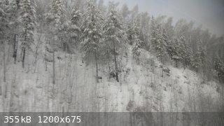 IMG_8862.JPG - 355kB