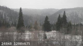 IMG_8937.JPG - 248kB