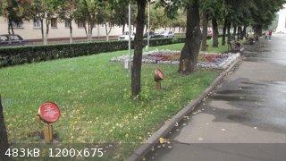 IMG_2723.JPG - 483kB