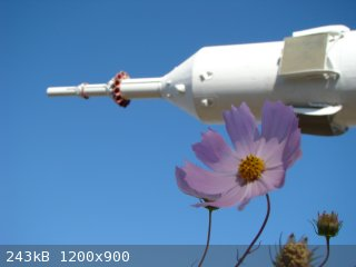 DSC05505.JPG - 243kB